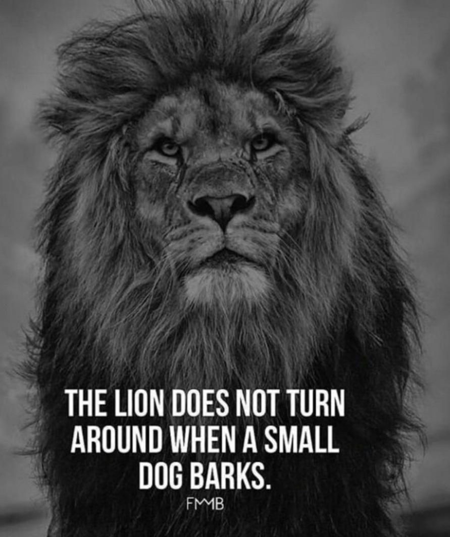 Lion Powerful Quote